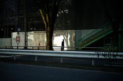 Shibuya ghost , 2019