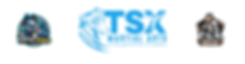 TSX Taekwondo- Team Bradford (1).png
