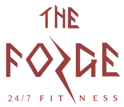 Image of Image of the Forge 24/7 Best gym in South Tampa