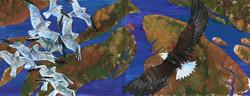 Fraser River Delta. Birds