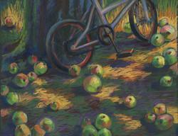 bike and apples