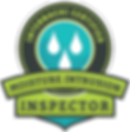 MoistureIntrusionInspector-icon-web - Co