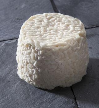 crottin-de-chevre-france-fromage-420-0.j