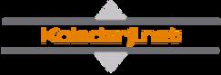 koledarji-logo-1.png