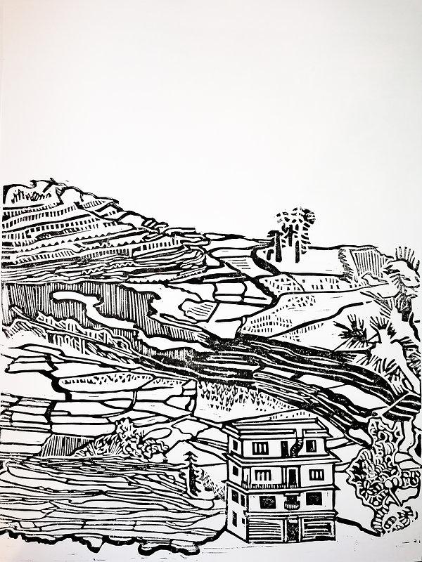 Ruby Boswell-Green, Nepalese Rice Fields.jpg