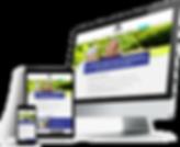 triple_web_display.png