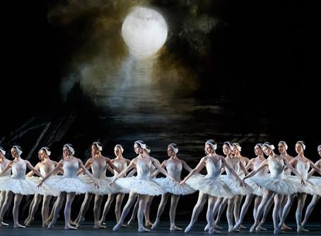 Swan Lake: Beauty Behind Pain (Act II Coda)