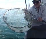 Motorized Fishing - $450