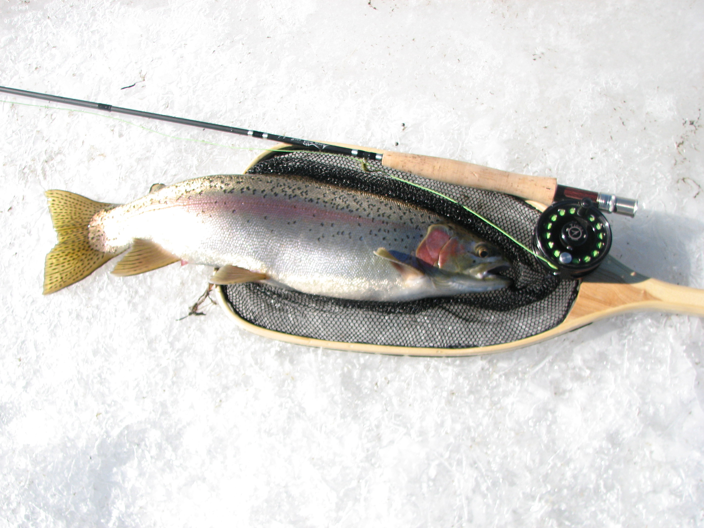 Ice Fishing Antero