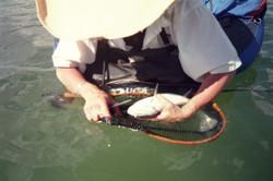 Belly Boating Spinney