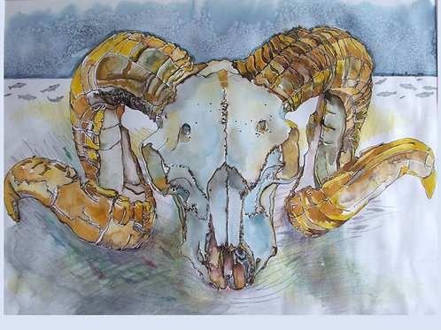 "Ram Skull 8x10"" Michele Murray watercolor tile"