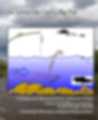 coverinSIGHtS V2.jpg