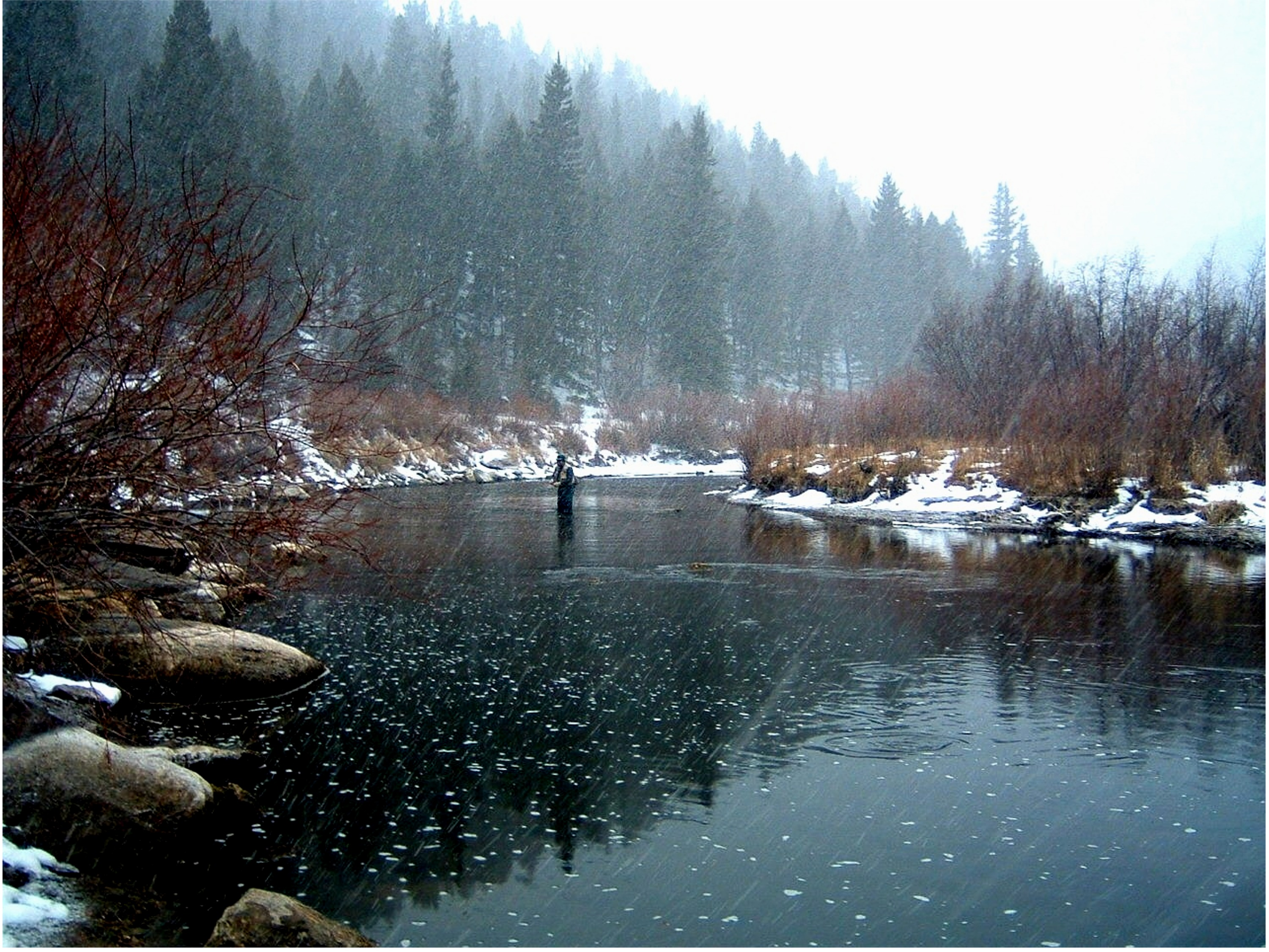 Eleven Mile Canyon Winter