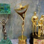 Nirmal Soni Awards