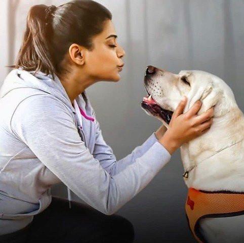 Priyamani loves dogs