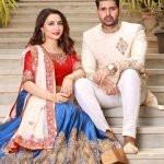 Dhrriti Saran husband