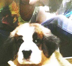 Rohman Shawl, A Dog Lover
