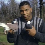 Tyson with Pigeons