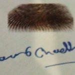 Manveer Choudhary Signature and Thumb Impression
