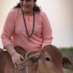 Anandmurti Gurumaa - Her Project Of Goshala