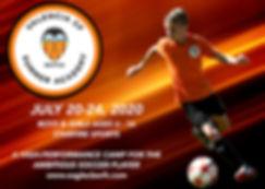 2020 Valencia Summer Academy banner.jpg