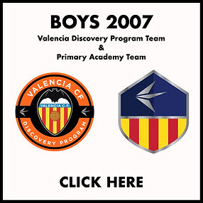 Boys 2007 Tryout Icon.jpg