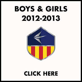 2012-13 TRYOUT ICON.jpg