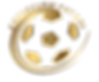 Eagleclaw Futsal Icon 3.png