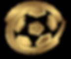 Eagleclaw Futsal Icon 3.png