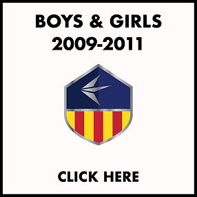 2009-11 TRYOUT ICON.jpg