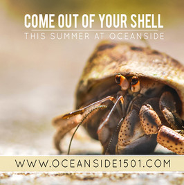 OceansideC.jpg