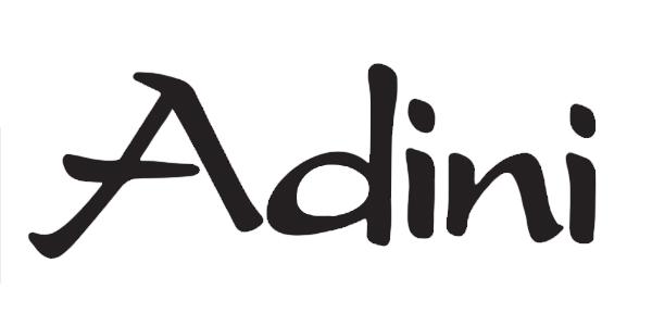 AdiniLogo