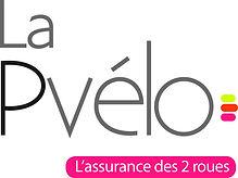 p-velo_logo_edited_edited.jpg