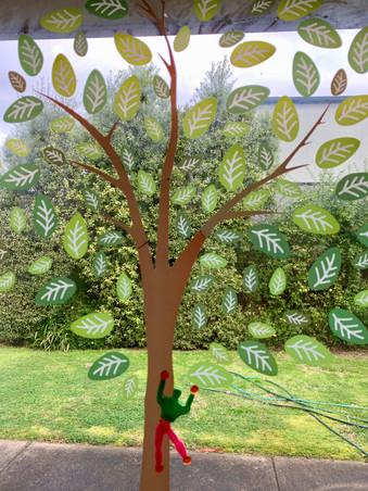 Zac climbing down tree MC in Bag 2020.jpeg