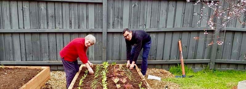 Veggie Garden for Asylum Seeker Household 2018