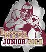 LH Junior Gold - Hustle Hit Image (Vertical, Tumbler Image).png