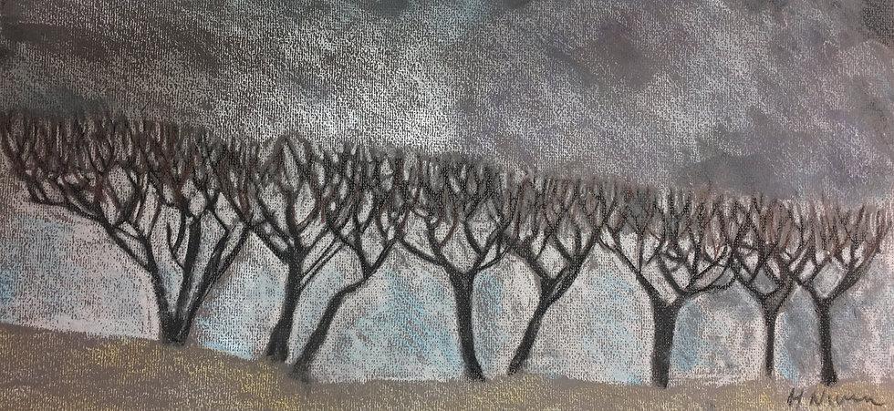 Winter Hedgerow 20x50cm