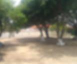 academia 1.jpg