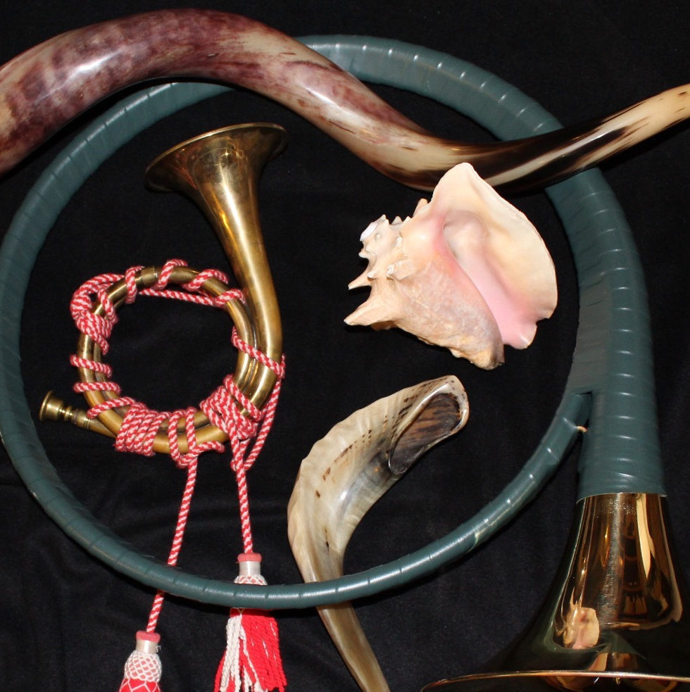 various musical horns