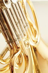 french-horn-1566587_1920.jpg