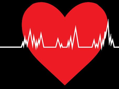 Estudo conclui quantas vezes se deve lavar os dentes por dia para prevenir problemas de coração.