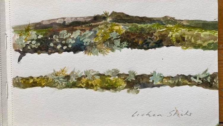 Lichen Twigs