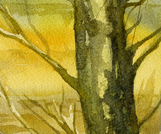 Green Tree yellow field