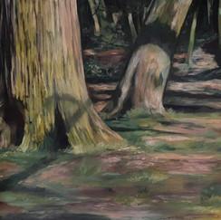 Arnos Trees