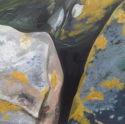 Lichen Stones.jpg