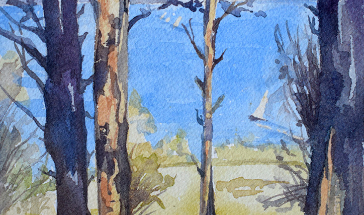 Sea and trees