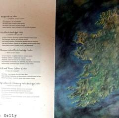 Advertising Ireland Map for Dante Brisco