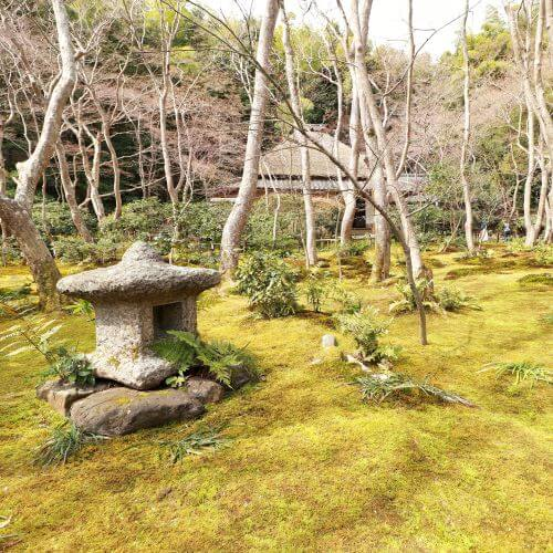 A stunning example of a moss garden, at Gioji temple in Kyoto's Arashiyama district