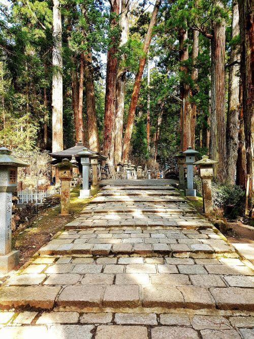 A pathway leads through the Okuno-in cemetery in Koyasan