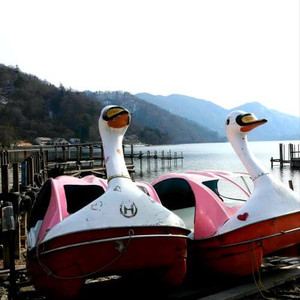Swanboats on the shore of lake Chuzenji in the Nikko mountains